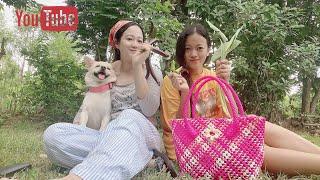 Naga village lifestyle (part-3) |Ao Naga delicacy Anishi with smoked pork & Rusep| Family Dinner| YouTube Videos