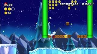 Frosted Glacier-2 Cooligan Fields [New Super Mario Bros Wii U]