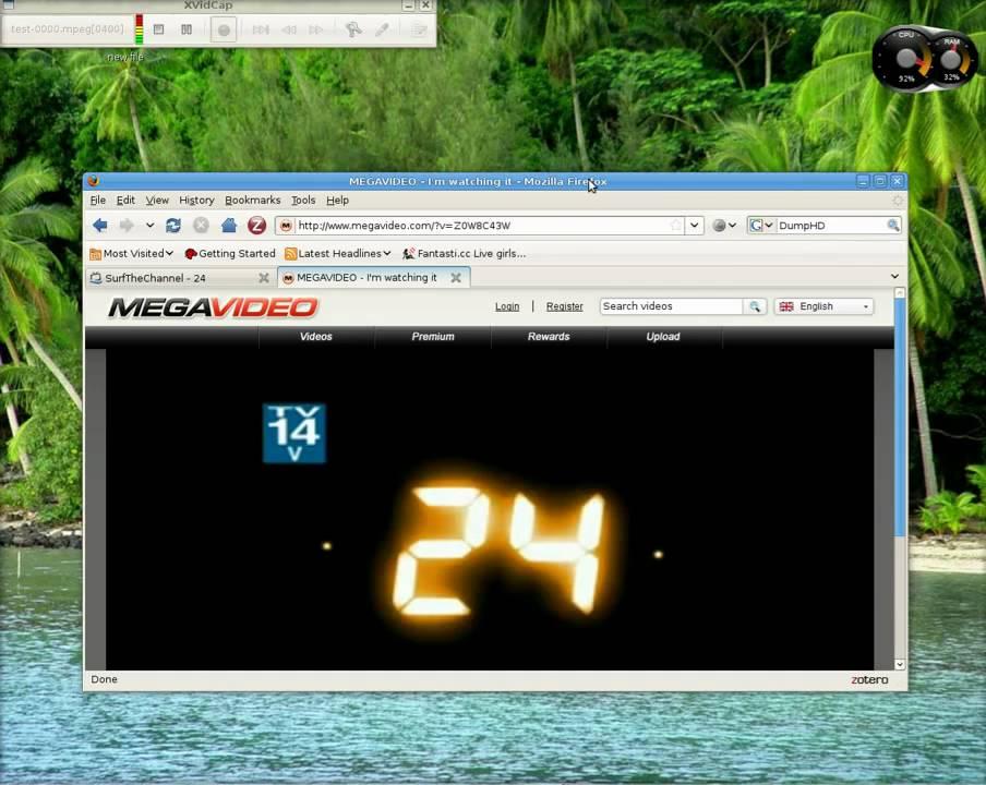 megavideo ubuntu