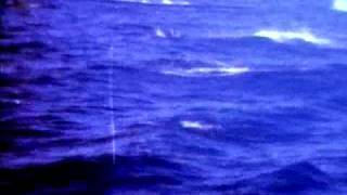 Atlantic Ocean - Waterfall (VIVA 1995)