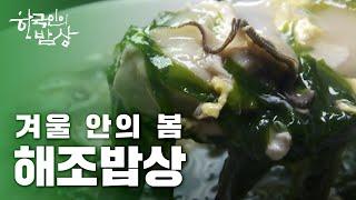 [한국인의밥상] [풀영상] 겨울 안에 봄, 해조 밥상 #완도바다