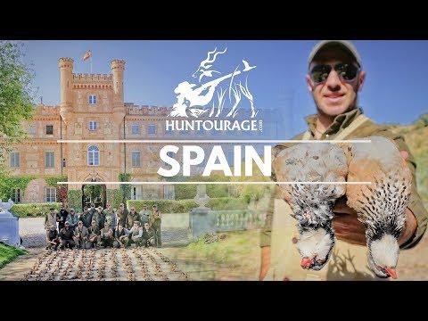 Royal Partridge Shooting in Spain | صيد الحجل في اسبانيا