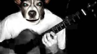 DogHead_Birthday.mov Thumbnail