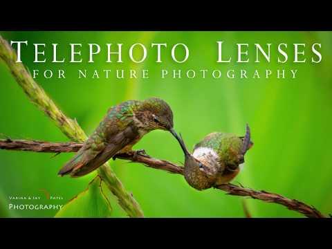 Telephoto Lenses for Nature Photography Tutorial thumbnail