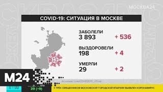 В Москве за сутки зафиксировали 536 случаев заражения COVID-19 - Москва 24