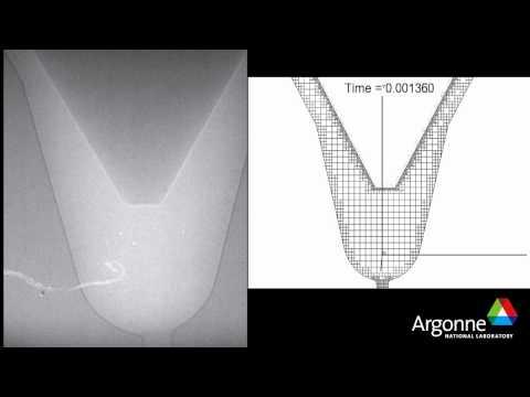 Argonne National Laboratory Needle Simulation
