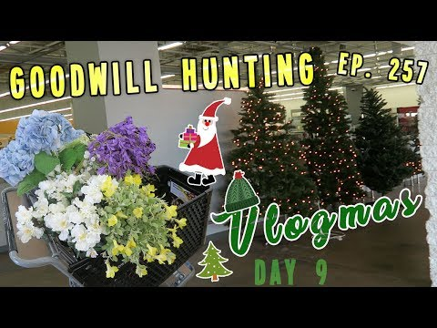 GOODWILL HUNTING EP. 257 | VLOGMAS DAY 9