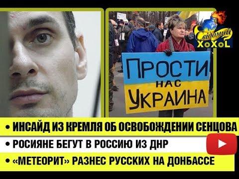 Инсайд из кремля об освобождении Сенцова •  Коренные россияне бегут в Россию из ДНР