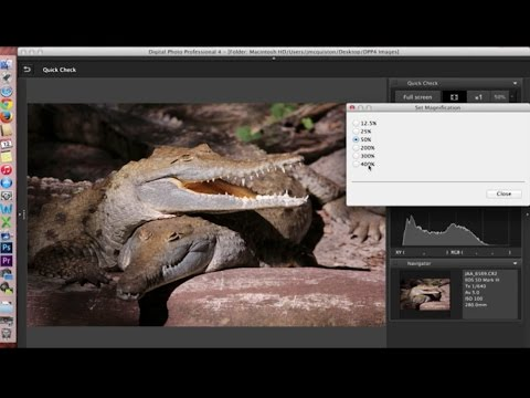 Canon Digital Photo Professional (DPP) 4: Software Overview and Interface Tour