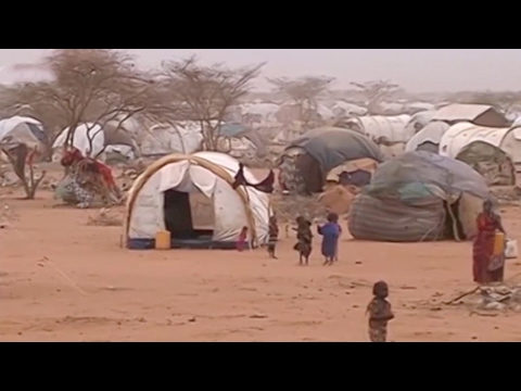 Somalia concerned about impact of travel ban