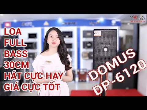 [Khám phá] Loa karaoke hay nhất hiện nay dùng cho phòng karaoke kinh doanh giá lại rẻ, Domus DP 6120