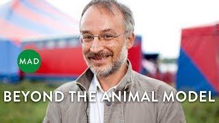 Beyond the Animal Model   Stefano Mancuso