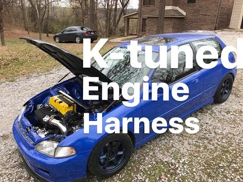 K-tuned engine harness - YouTube