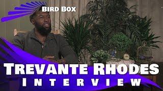 BIRDBOX - TREVANTE RHODES INTERVIEW