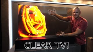 I found a Transparent TV! How does it work?! OLED vs LCD