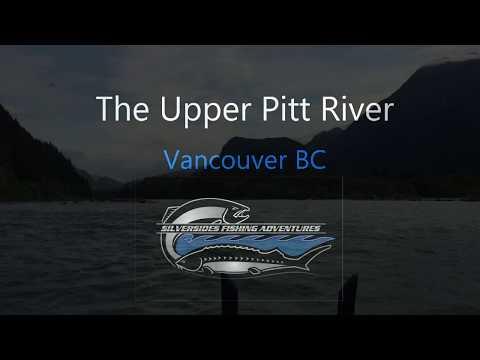 Upper Pitt River Fly Fishing 2019