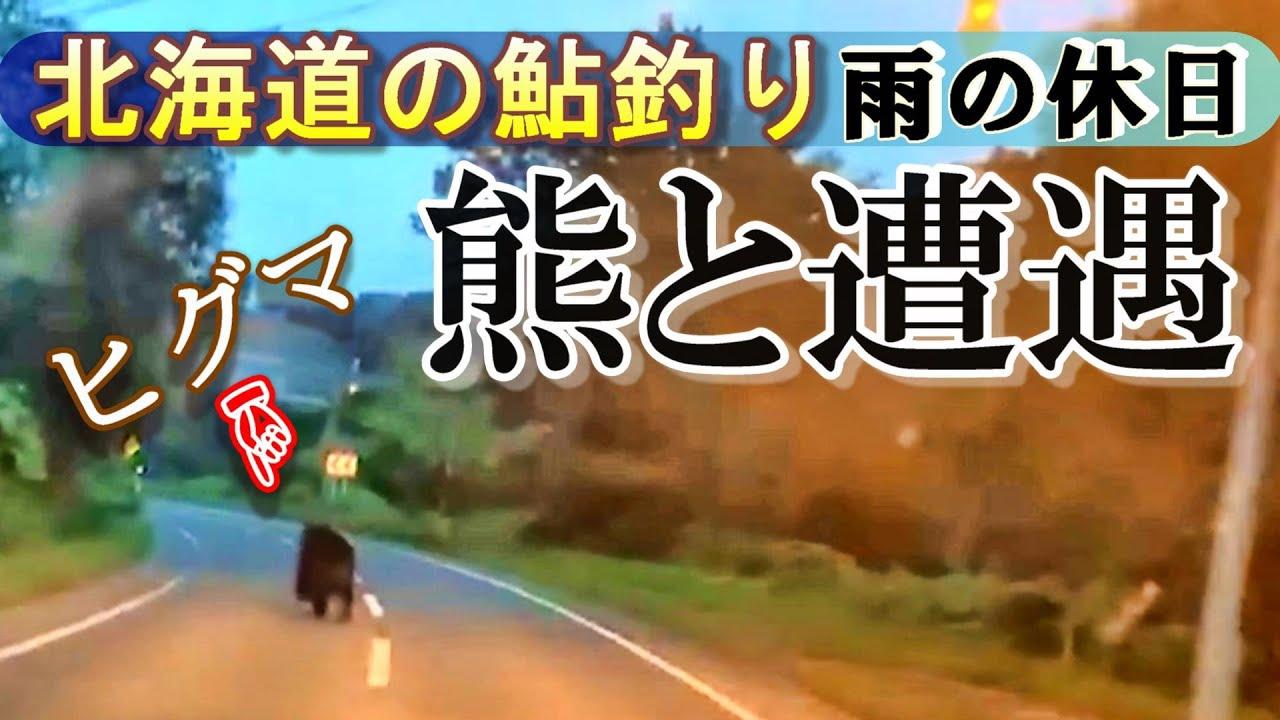 【鮎の友釣り】北海道の鮎釣りは熊に注意です。