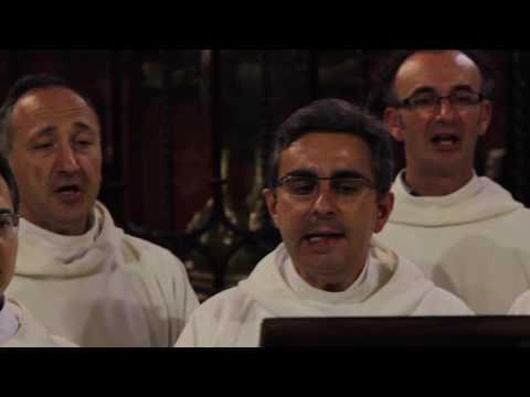 Franciscus vir catholicus