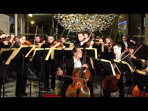 Yo Yo Ma and the Chicago Civic Orchestra pop-up concert at The Shops at North Bridge 12.10.13