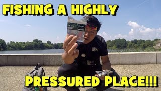 Fishing a HIGHLY PRESSURED Body of Water! ft. EuroTackle Micro-Finesse Soft Plastics!