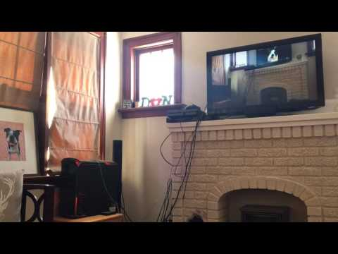 Dog barking at video of himself barking at another video of himself.