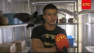 "Корабль | Съемки серии ""Птицы"""