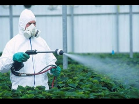 5 Scary Effects of Eating Pesticides That You Should Know About