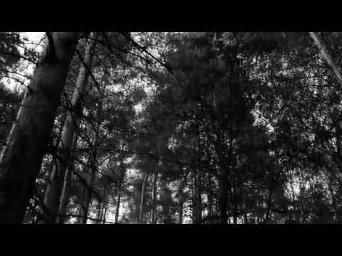 4 отряд - клип Slipknot - Fall