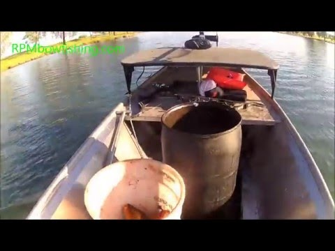Solo California Bowfishing, Just A Man, His Bow And A Barrel Full Of Carp