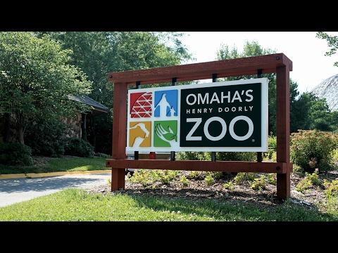 A Peek Inside Omaha's Henry Doorly Zoo (2017)