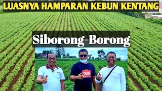 Simson Sipahutar : Tapanuli Bisa Eksportir Hortikultura ke Eropa, Kita Mampu Kok! #FoodEstate