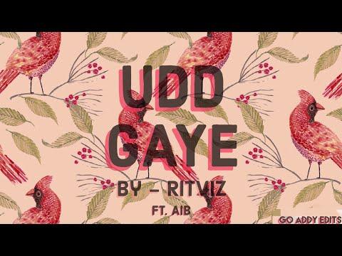 Udd Gaye  RITVIZ ft AIB  MASHUP