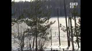 По струнам души - Светлана Бодунова (Про Родину стихов немало сложено)