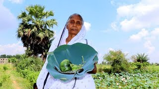 Indian Village Lunch Routine by Grandmother | Amazing Skill of Prepared Village Food