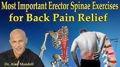 hqdefault - Back Pain Erector Spinae