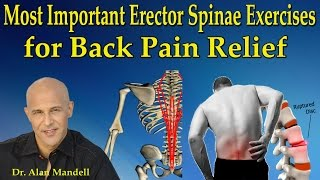 Most Important Erector Spinae Exercises for Back Pain Relief - Dr Mandell
