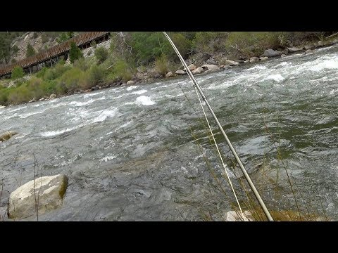 Truckee River Fishing - High Water Nymphing