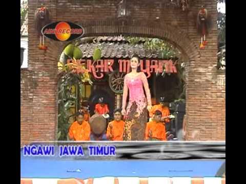 Setulus hatimu,jeki,by.Campursari Tokek Sekarmayang(call:+628122598859)