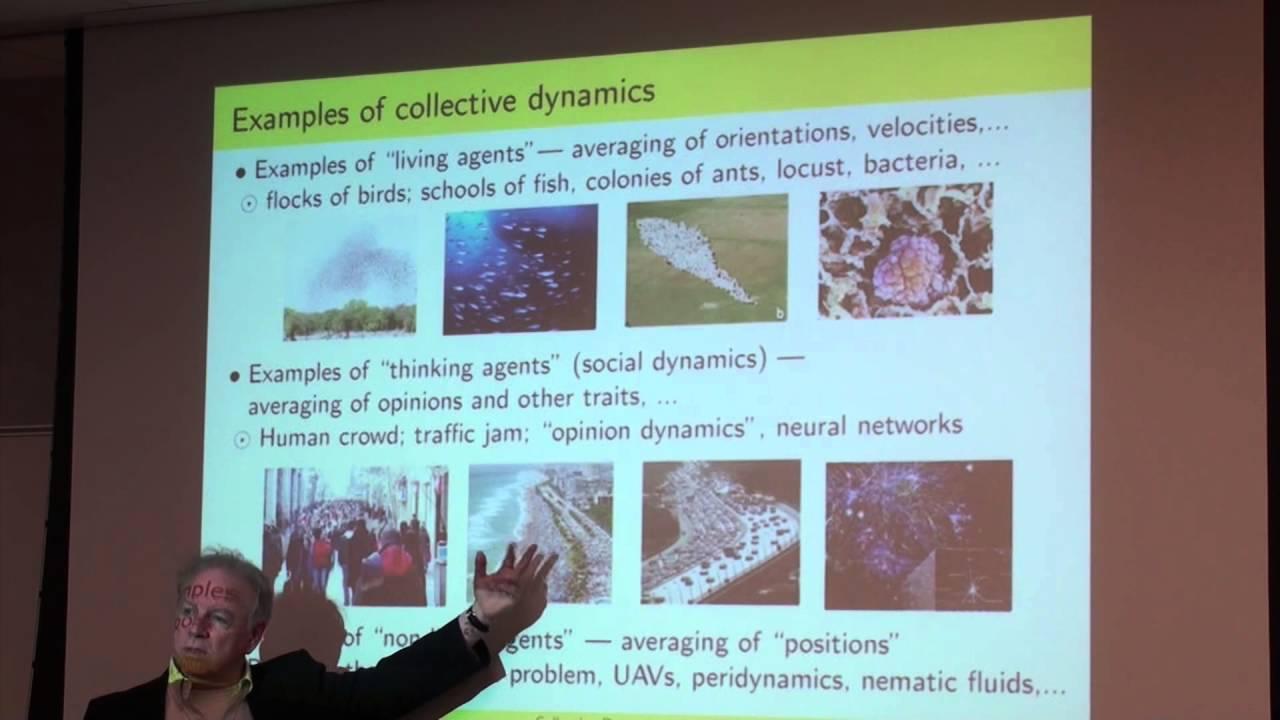 examples of social dynamics