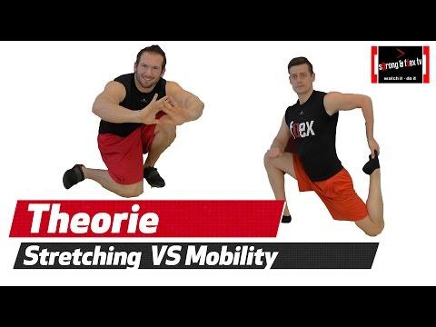 Stretching VS. Mobility - Was ist wann besser geeignet?