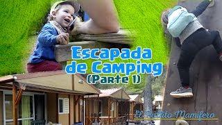 Primer camping de los Pollis + crianza en casa