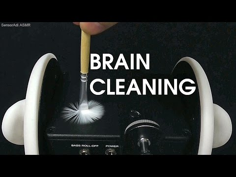 Time to Clean Your Brain / Binaural 3Dio ASMR Role Play Relaxation