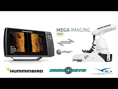 BLA - Trade Talk - Humminbird G2N with Minn Kota i-Pilot LINK