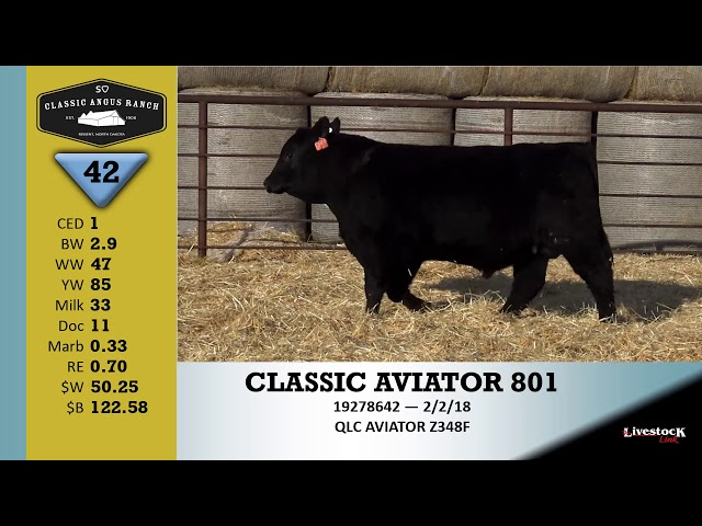 Classic Angus Ranch Lot 42