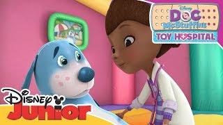Doc's Bouncy Castle Booboos! | Doc McStuffins | Official Disney Channel Africa
