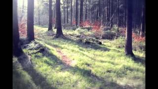 Hakobune - Secondhand Sunlight