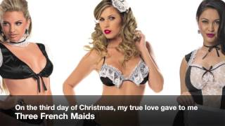 Lingerie for Christmas ~ Twelve Days of Sexy-Ness | Teddy Girl
