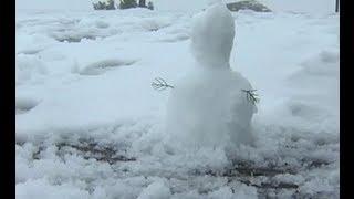 Snow surprise for Cape Town