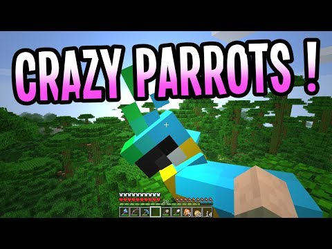 Taming Parrots!! - Paul Plays Minecraft - Ep. 34 - Let's Play Minecraft 1.12 Survival