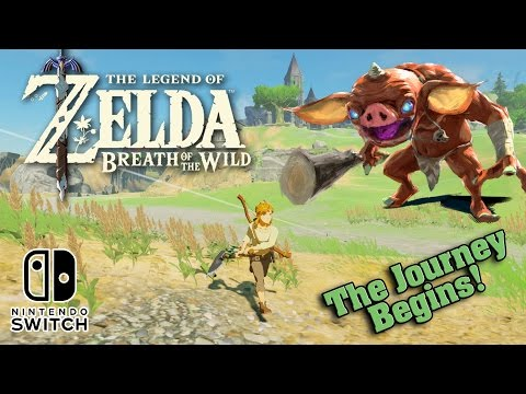 The LEGEND OF ZELDA: BREATH OF THE WILD on the Nintendo Swit